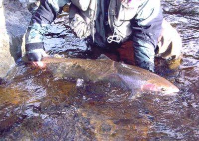 Steelhead Fishing on Prince of Wales Island Alaska